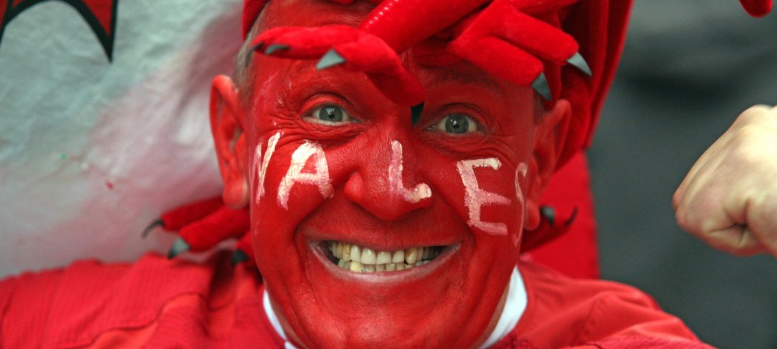 welsh rugby fan
