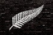 New Zealand All Blacks Rugby Logo